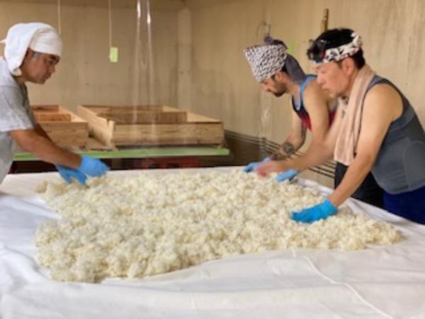 令和3年度 可児市(明智の荘)産 五百万石の米麹造り★サムネイル